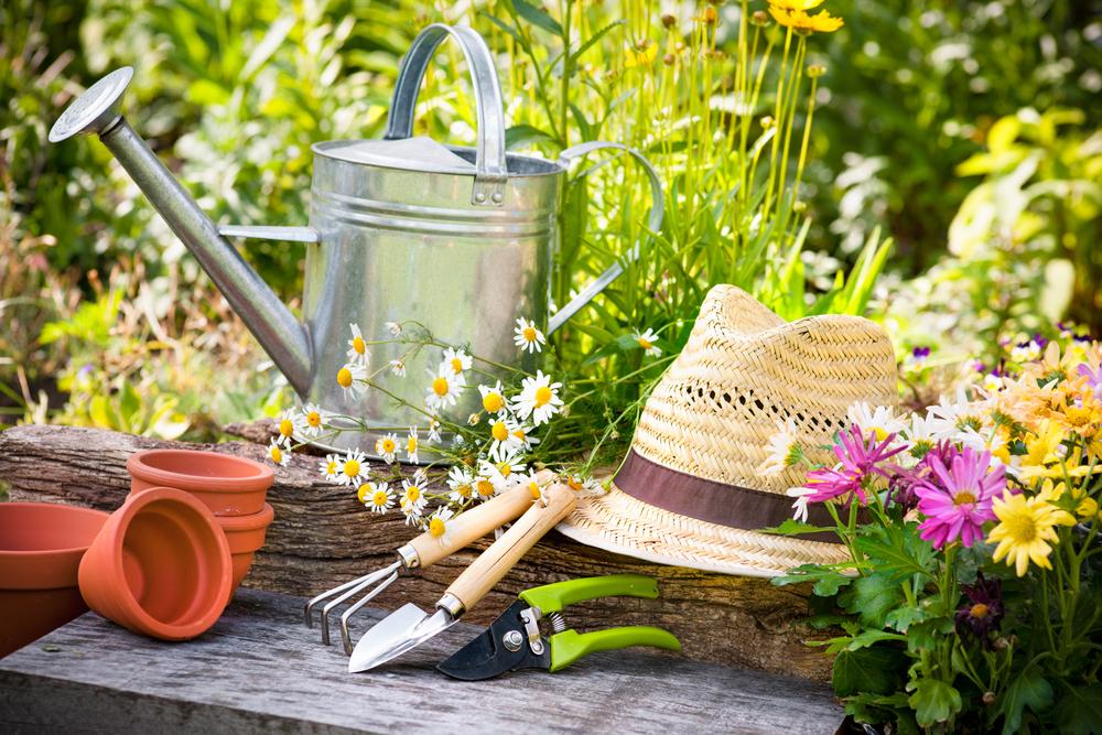 Spring gardening tips - The English Garden on Gardening  id=23944