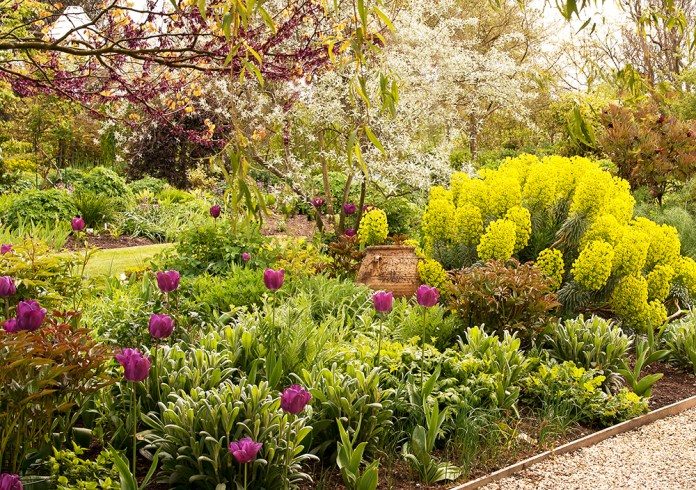 Plant Suggestions For A North South East Or West Facing Garden
