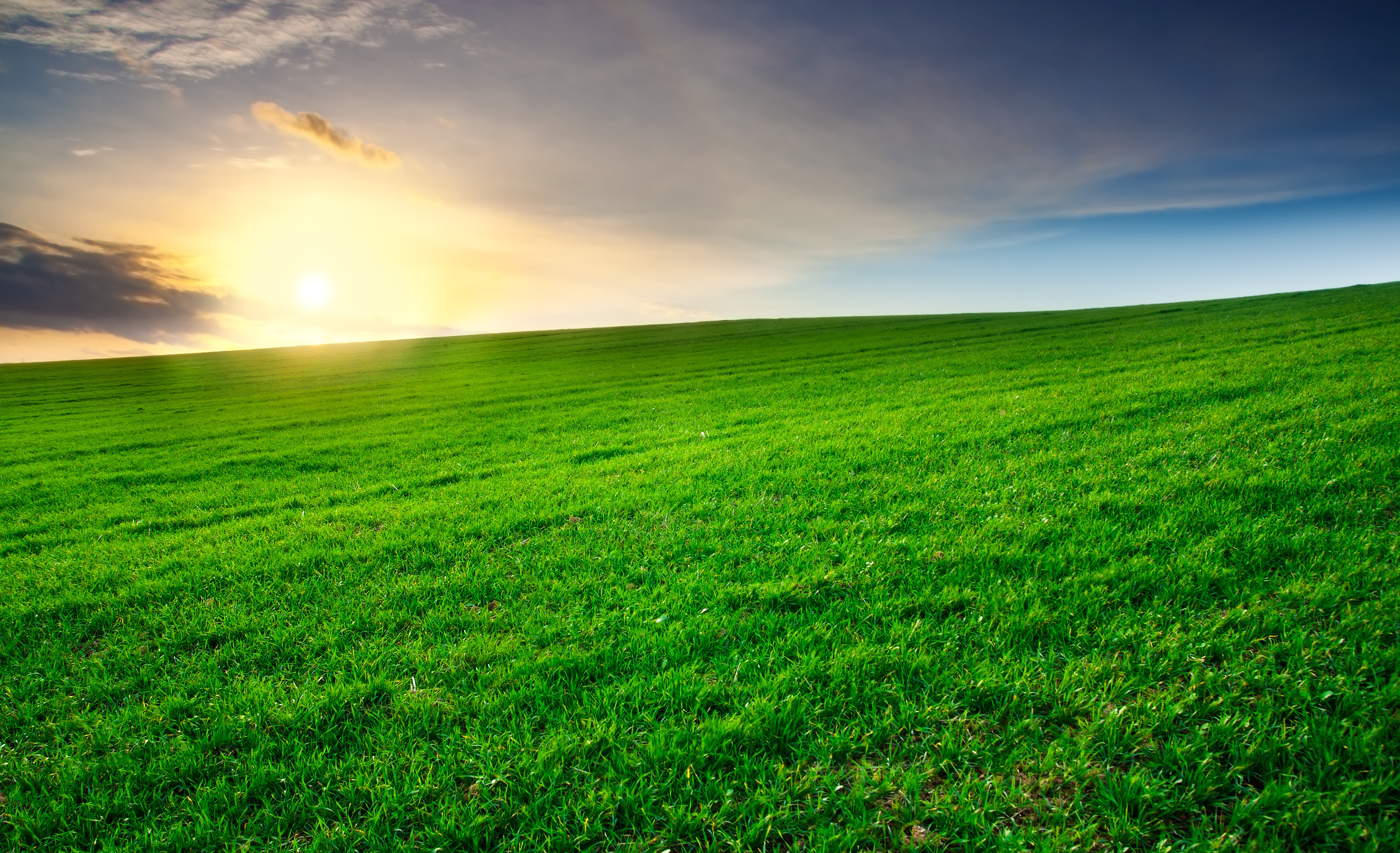 Green Field At Sunset With Clouds In The Background Clearing Thoughts Jpg 183 The Epic Self