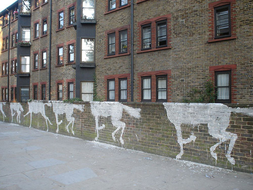 Equine Graffiti