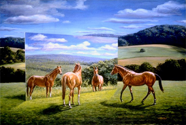 Equine Reflection