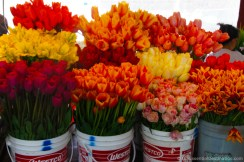 Public market flowers