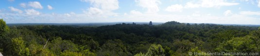 The view from Tikal Temple IV