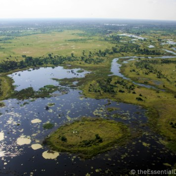 Okavango Delta from above