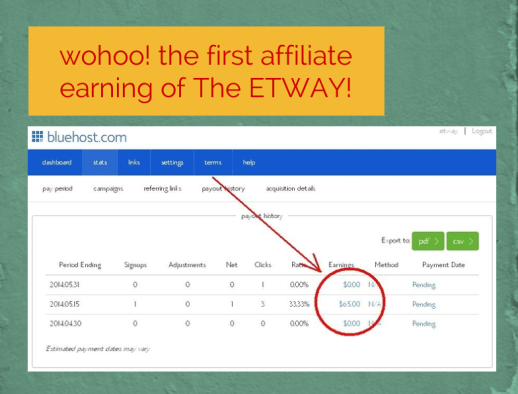 wohoo! the first affiliate earning of