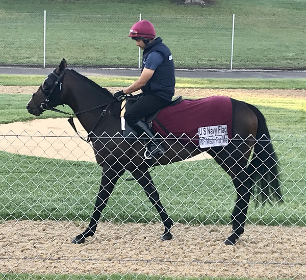 U S Navy's Everest Hopes Hinge On Randwick Track