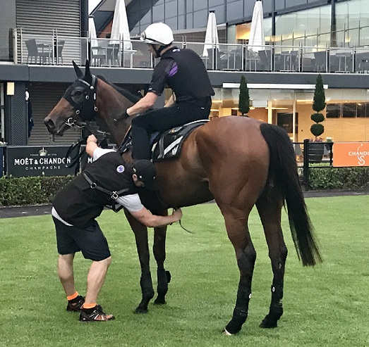 Peters Knew Instantly Waller Was Fit For His Everest Queen