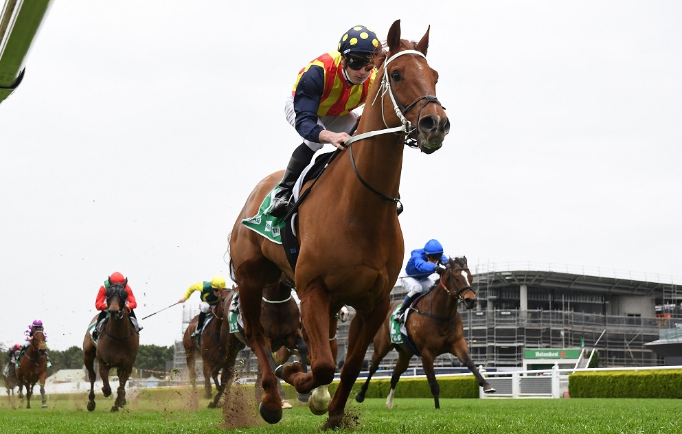 Waller's Star Set To Be An Everest Force Of Nature