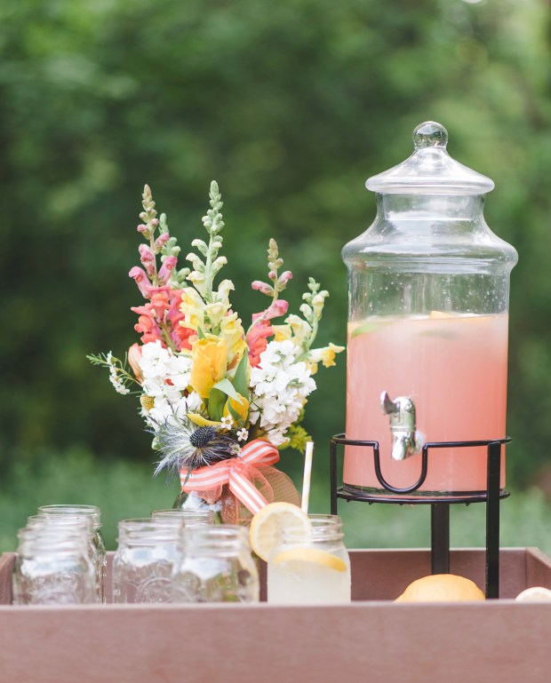 View More: http://lindsaydavenportphotography.pass.us/kate-styled-picnic-4-17-2016-print