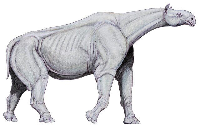 Interesting Facts about Paraceratherium in Hindi | Paraceratherium के बारे में रोचक तथ्य
