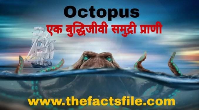 ऑक्टोपस(अष्टबाहू) के बारे में जानकारी और रोचक तथ्य - InterestingFacts about Octopus in Hindi
