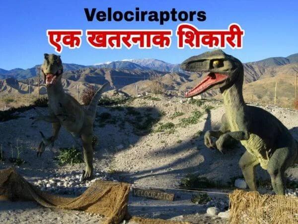 वेलोसिरैप्टर्स के बारे में रोचक तथ्य | Facts about Velociraptors in Hindi