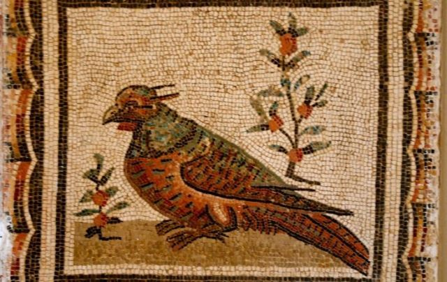 A mosaic of a bird which used to be a popular ancient Roman pet.