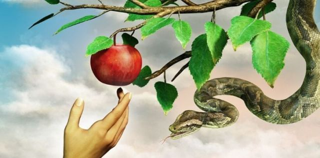 The forbidden fruit may not have been an apple