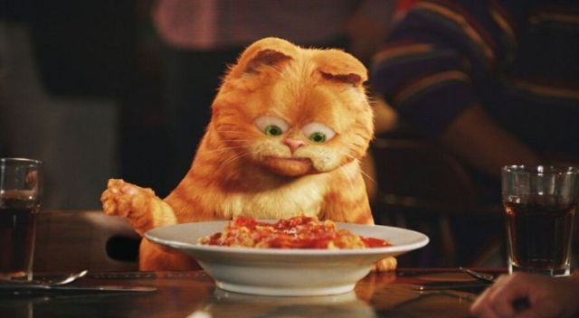Garfield the cat staring at a bowl of lasagne