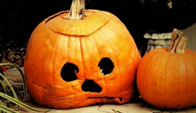 A very sad looking pumpkin
