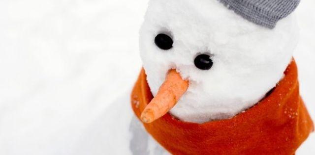 Snowman Carrot Nose