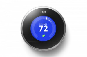 Nest-cooling-with-leaf-620x412