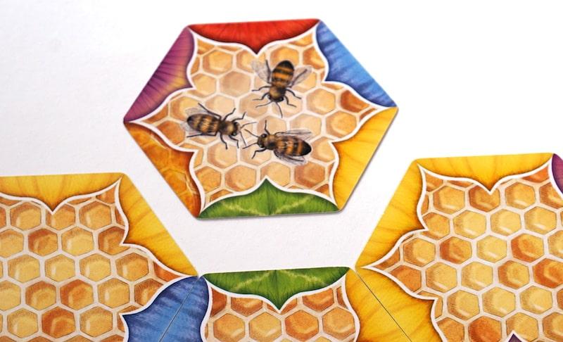 Worker bee hexagon