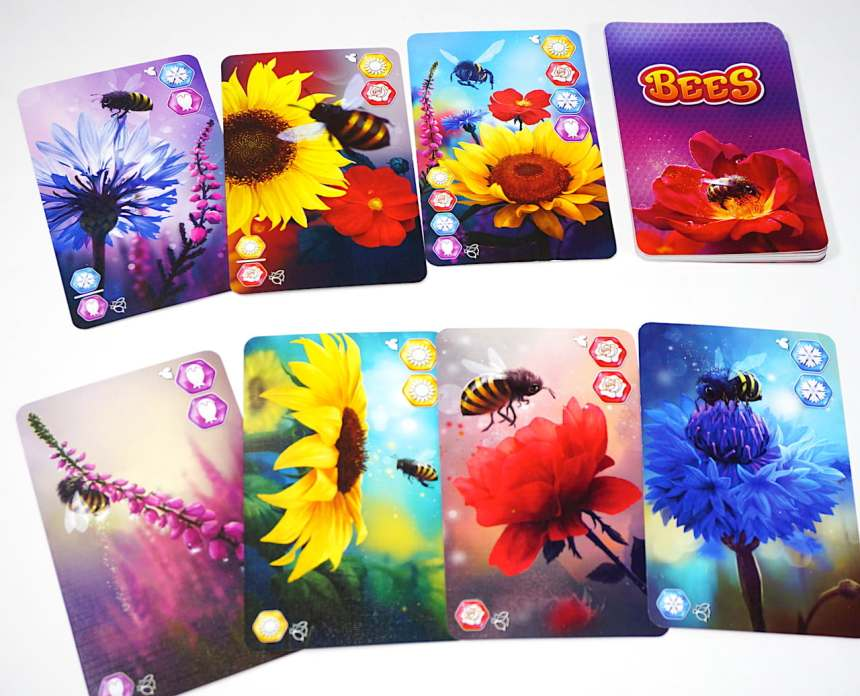 Gather cards: blue/purple, red/yellow, 4-color, purple/purple, yellow/yellow, red/red, blue/blue.