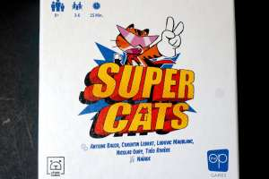 Super Cats game