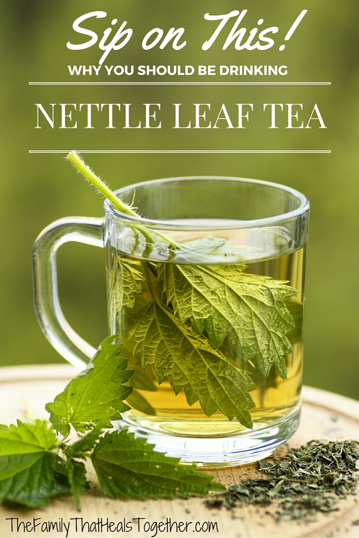 Nettles leaf tea