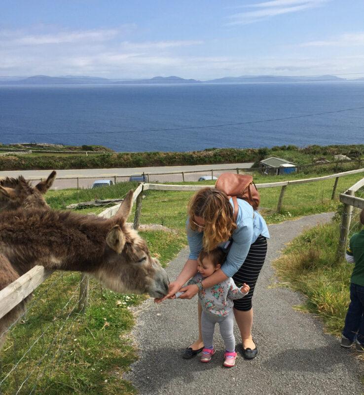 Ireland farm with kids