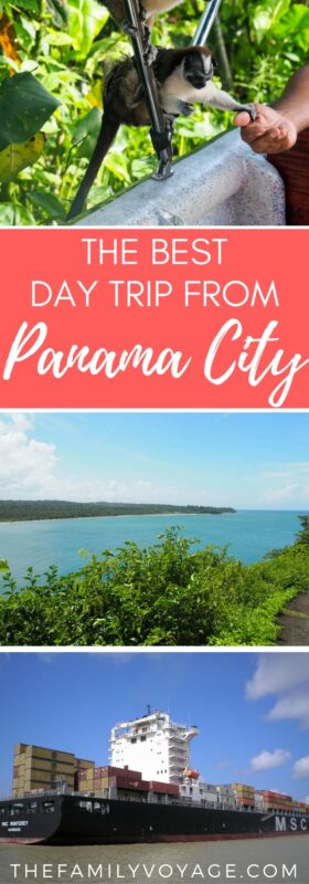 Are you visiting Panama City? Click to read all about the BEST daytrip you can take to see Panama from ocean-to-ocean, all before sunset! You'll see monkeys, rainforests, cargo ships and more... and there might even be a pirate around the corner. #Panama #PanamaCity #tour #wildlife #monkey #daytrip #PanamaCanal