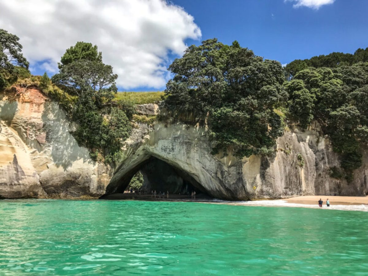 New Zealand South Island Family Attractions
