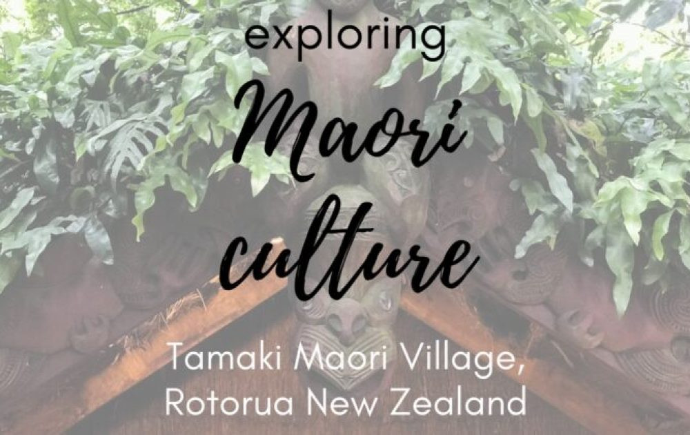 Up close with Maori culture at Tamaki Maori Village