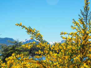 things to do in Bariloche Argentina-32