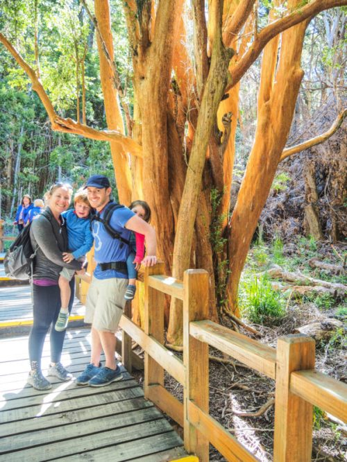 things to do in Bariloche Argentina-38