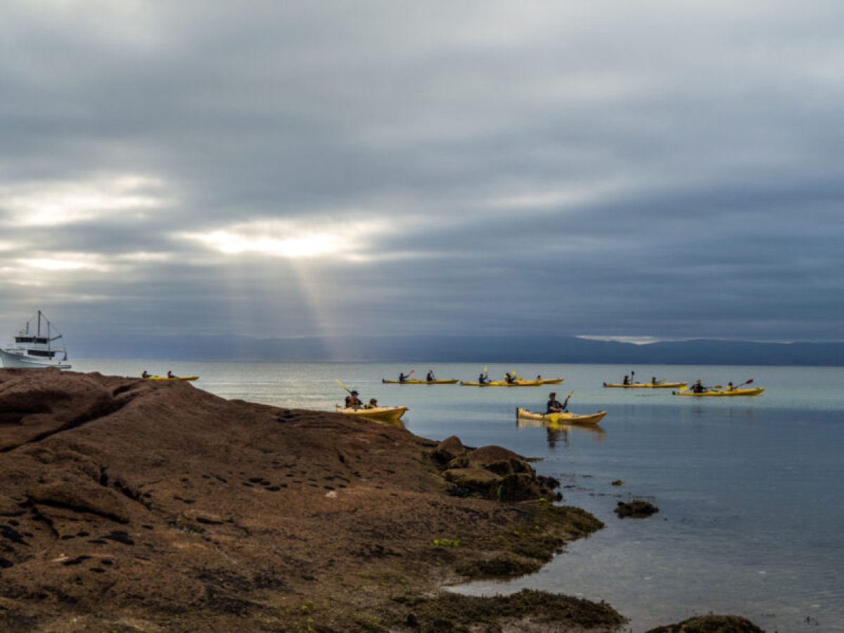 Freycinet kayaking, Tasmania