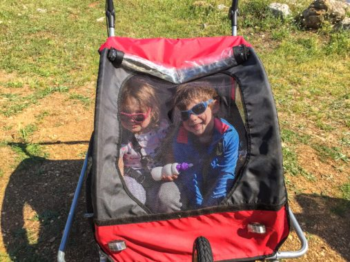 bike trailer for two kids
