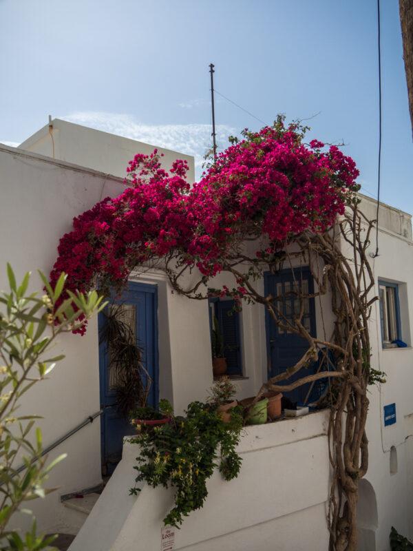 Doorway in old town of Naxos, Greece #Naxos #Greece