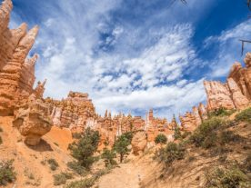 bryce canyon national park-12