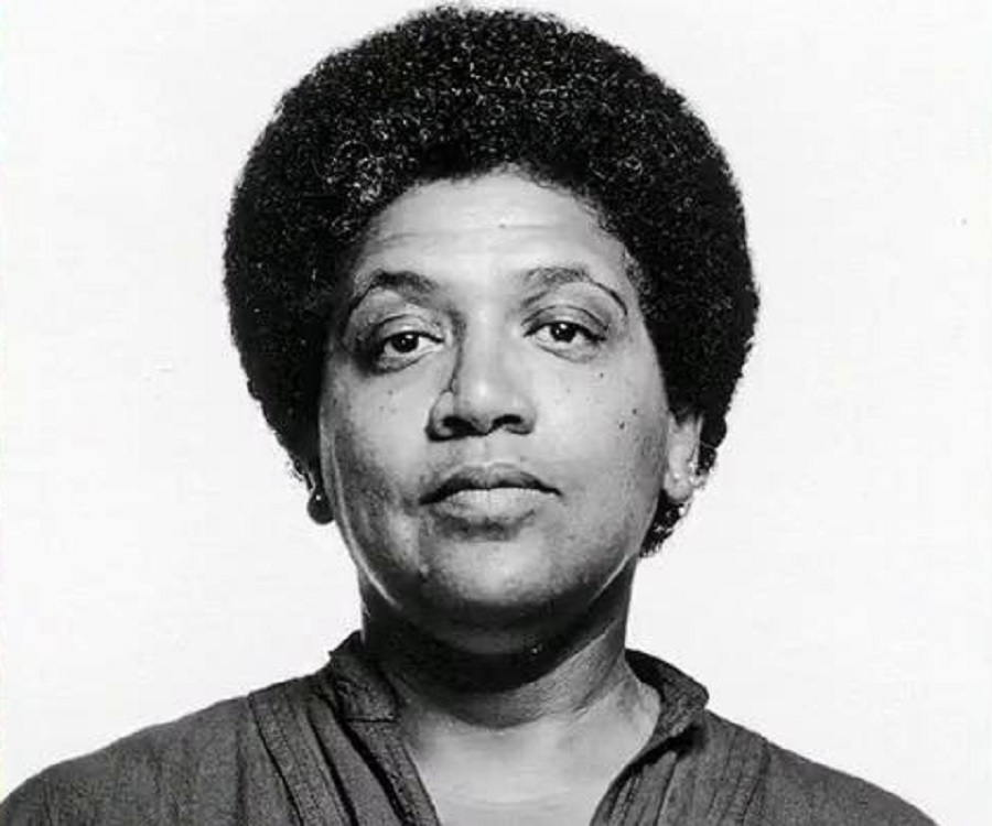 audre lorde power essays Audre lorde (1934 – 1992)  and the power of lorde's work because it is a substantive contribution to  these lesson plans utilize selected essays from lorde.