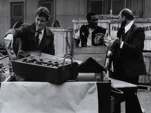 Eddie Murphy,Judge Reinhold