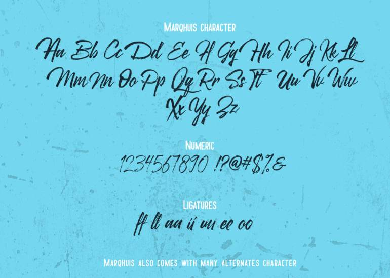 Best Selling Gorgeous Fonts 5