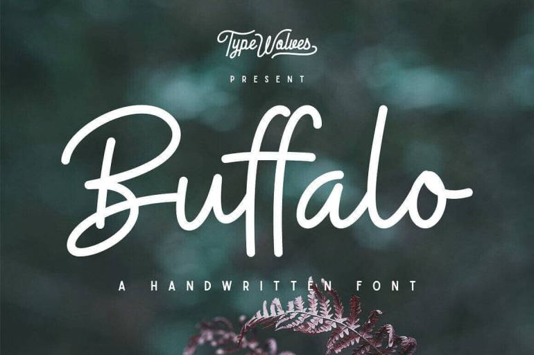 Best Selling Gorgeous Fonts Buffalo1