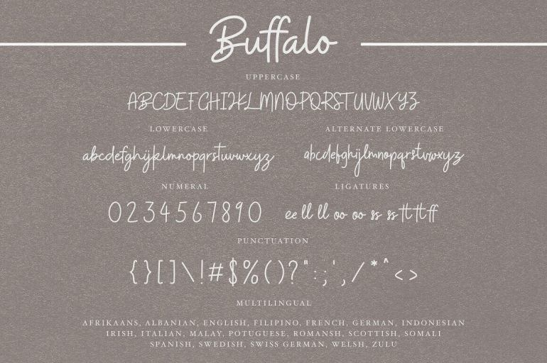Best Selling Gorgeous Fonts Buffalo10