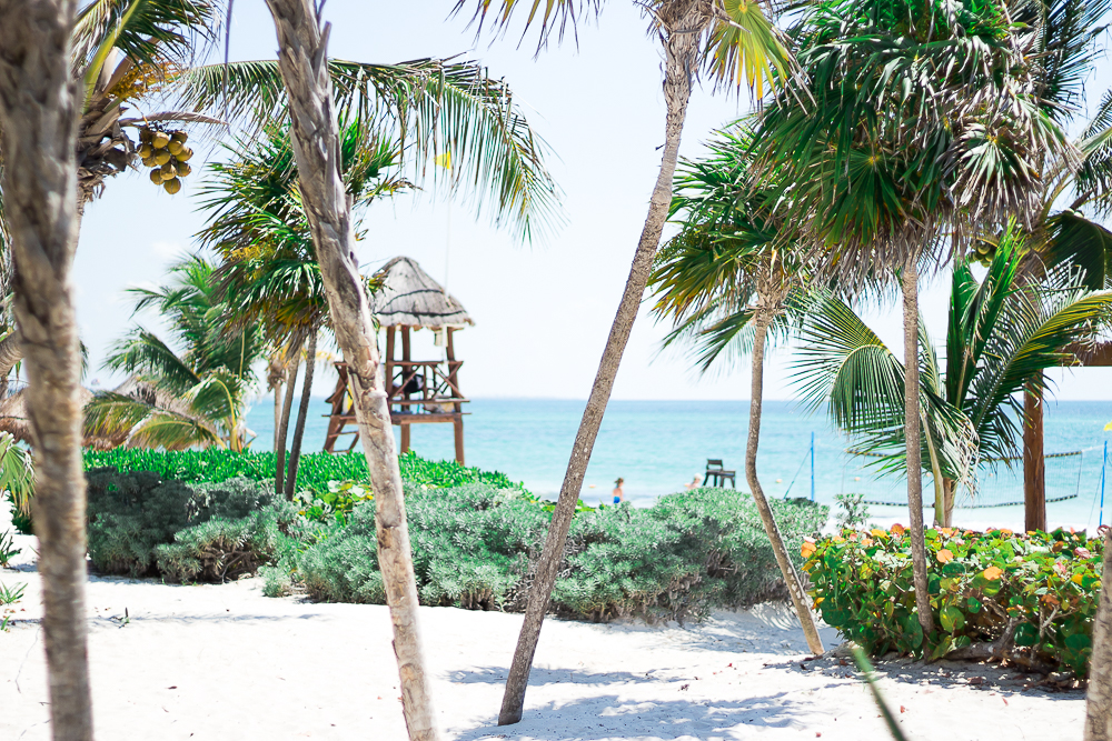 Maroma-Beach-Mexico-Travel-Blog-1431
