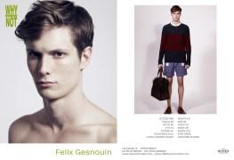 Felix_Gesnouin