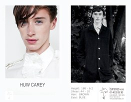 huw_carey