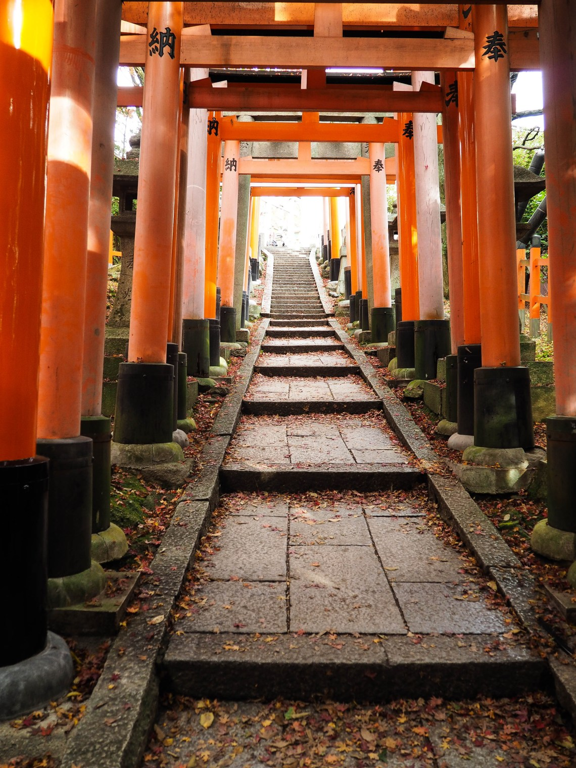 These Photos Will Make You Madly In Love With Japan This Fall