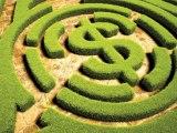 green finance money