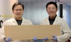 Liangbing Hu, left, and Teng Li, right, have found a way to make wood more than 10 times stronger and tougher.