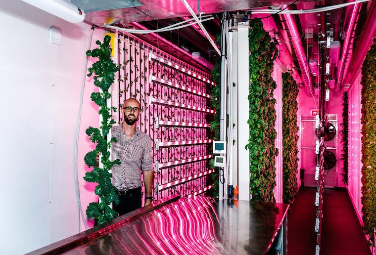 modular farms, Sydney