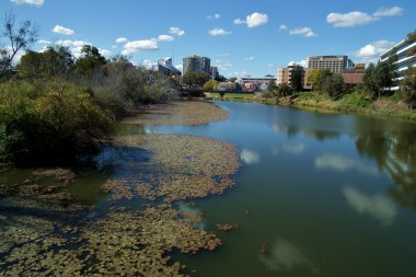 Selling swimmability to spark the urban river clean ups