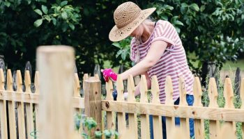 woman working in garden by wooden fence